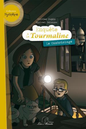 Enquête à la Tourmaline : Le cambriolage